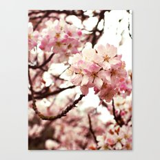 Front and Centre Canvas Print