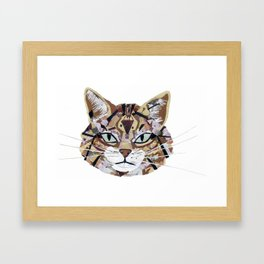 Scottish Wild Cat Framed Art Print