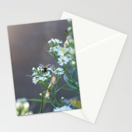 Rusty Patch Bumble Bee Stationery Cards