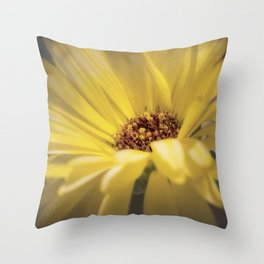 Yellow Calendula Throw Pillow