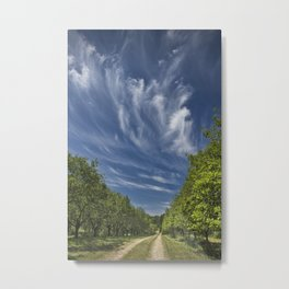 Orchard in West Michigan with Cirrus Clouds Metal Print