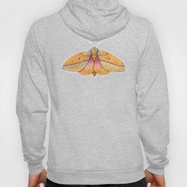 Bisected Honey Locust Moth (Sphingicampa bisecta) Hoody