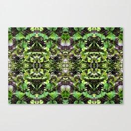 Mustard Greens & Sorrel Garden Canvas Print