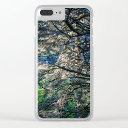 Sunlight Tree Clear iPhone Case