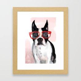 Nerdball the Boston Terrier Framed Art Print