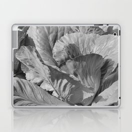 Noonday Farm Cabbage Laptop & iPad Skin