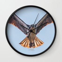 Nine Mile Osprey III Wall Clock