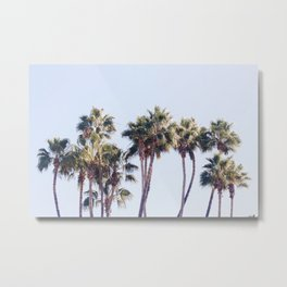 For The Love of Palm Trees Metal Print