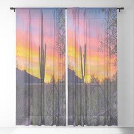 Land of Giants - Saguaro Cactus at Sunrise in the Sonoran Desert Sheer Curtain