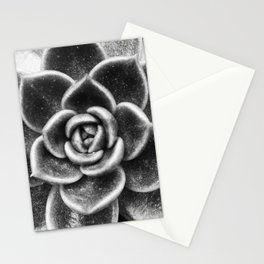 Succulent Symmetry Stationery Cards