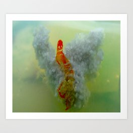nonspecific Art Print