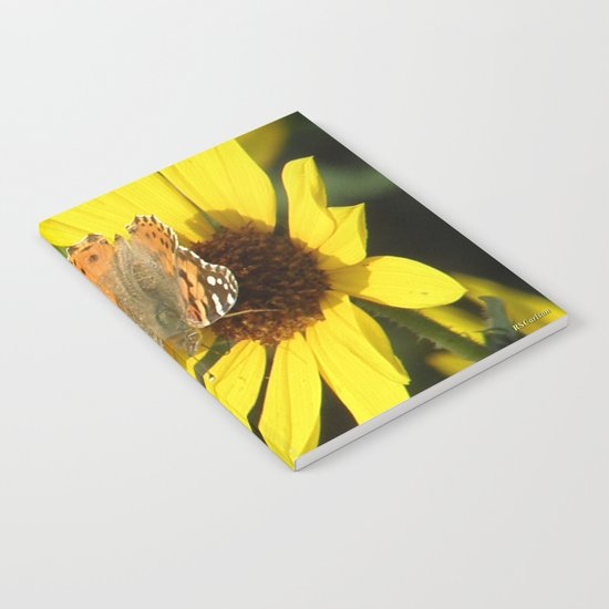 Painted Lady Butterfly Picks Pollen Notebook