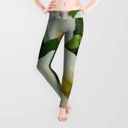 Overhead View Of Two Calla Lilies In A Garden Leggings