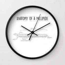 Millipede Wall Clock