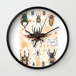 Beetles study Wall Clock