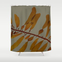kelp darker Shower Curtain