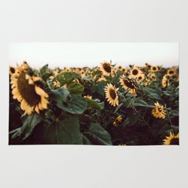 Sunflower field III Rug