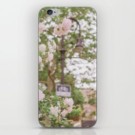 Roses Bloom in the Village iPhone Skin