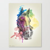 horse Canvas Prints featuring horse  by mark ashkenazi