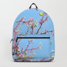Blossoming Cercis siliquastrum or Judas tree Backpack