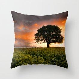 When the Sun Rose Throw Pillow