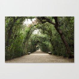 Arch Garden Canvas Print