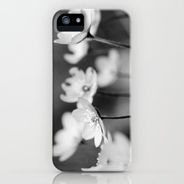 Anemone hepatica II - BW iPhone Case