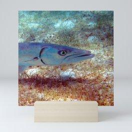 Watercolor Fish Great Barracuda, St. John, Where's the Beef? Mini Art Print