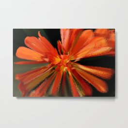 Color Blast Metal Print