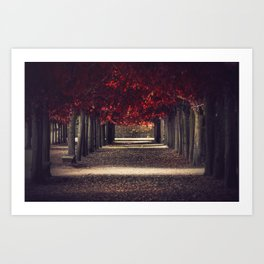 Red colors of autumn, surreal photo, red trees, alley in a park Art Print