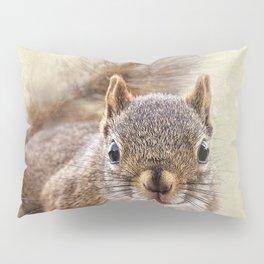 Squirrel Pillow Sham