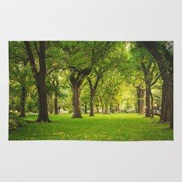 Central Park Summer Rug