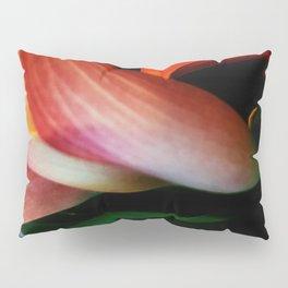 Faded Kayla Lily Pillow Sham
