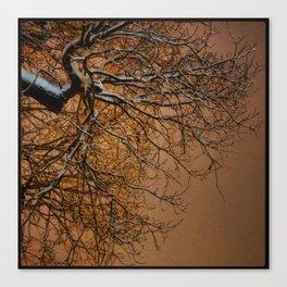 Snowy Tree Silhouette Reaching into the Orange Sky Canvas Print