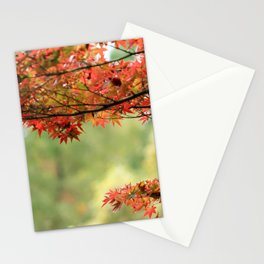 Japanese Maple Tree and Leaves in Fall Garden Photography Stationery Cards