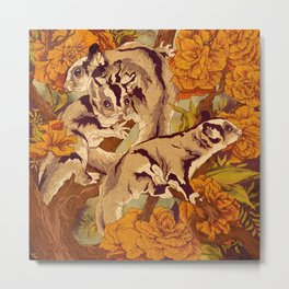 Sugar Gliders Metal Print