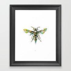 Insect Series - Hornet Framed Art Print
