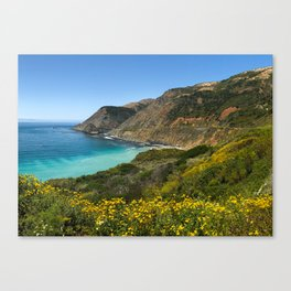 PCH Wildflowers Canvas Print