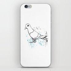 Bird Of Grey iPhone & iPod Skin