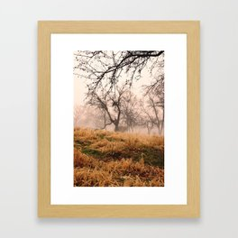 Natural Mystic in the Air Framed Art Print