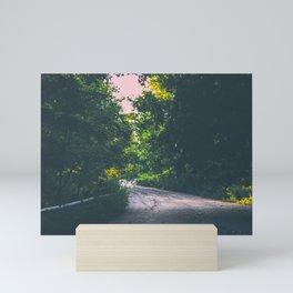 Lit up path Mini Art Print