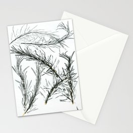Rosemary Stationery Cards