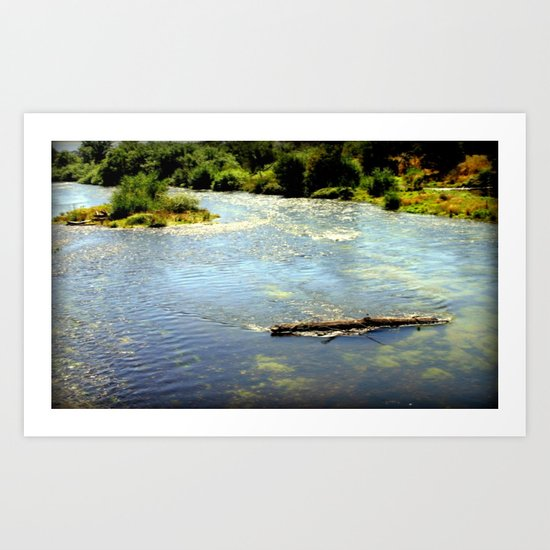 Floating Log Art Print