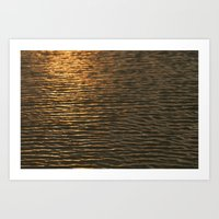 Gold Reflections Art Print