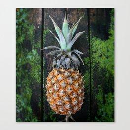 Weathered Pineapple Canvas Print
