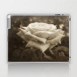 Pink Roses in Anzures 6 Antiqued Laptop & iPad Skin