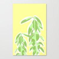 avocado Canvas Prints featuring Avocado by Maria Nordtveit