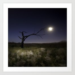 Witches Tree, Grab the Moon Art Print