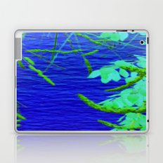 Blue Nature Laptop & iPad Skin