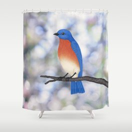male eastern bluebird bokeh background Shower Curtain
